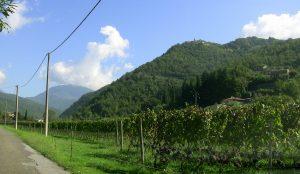 Casteldelpiano