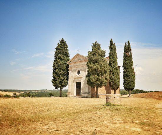 cipressi in Toscana