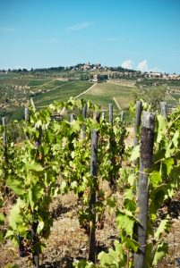 toscana accessibile chianti