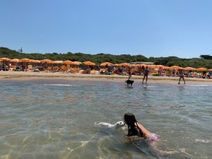 dog beach san vincenzo